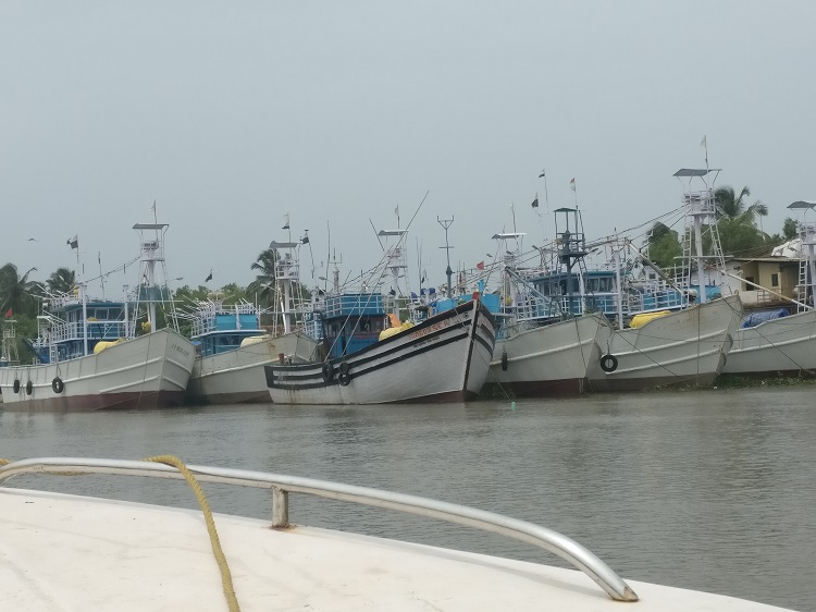 Boats parked in River Sal